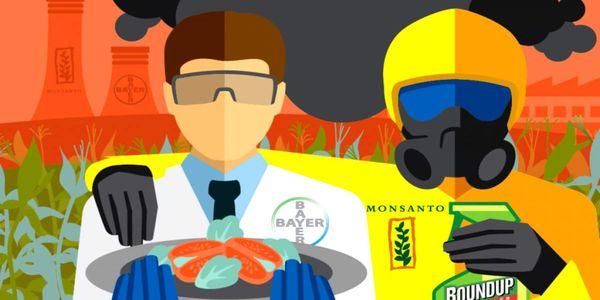 Καταδίκη Bayer - Monsanto για το καρκινογόνο Roundup