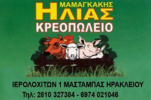 Μαμαγκάκης Ηλίας