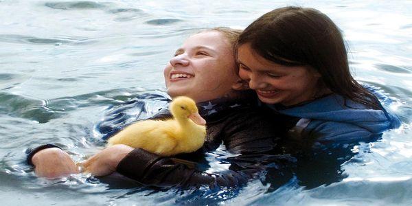 """ΜΦΙΚ: Προβολή ταινίας """"Les Oiseaux de Passage"""" σε συνεργασία με τη ΝεΚΛΗ"""