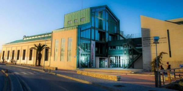 Χριστούγεννα στο Μουσείο Φυσικής Ιστορίας Κρήτης - Ειδήσεις Pancreta