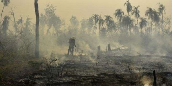 """Ο Αμαζόνιος φλέγεται: Σε κίνδυνο ο """"πνεύμονας"""" του πλανήτη"""