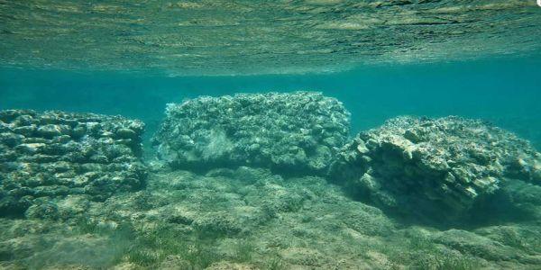 Στο φως σημαντικά αρχαιολογικά ευρήματα στο κόλπο του Παλαίκαστρου Σητείας   Pancreta Ειδήσεις