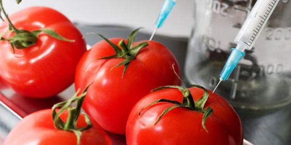 Πως θα καταλάβετε εάν υπάρχουν μεταλλαγμένα συστατικά στα τρόφιμα - Ειδήσεις Pancreta