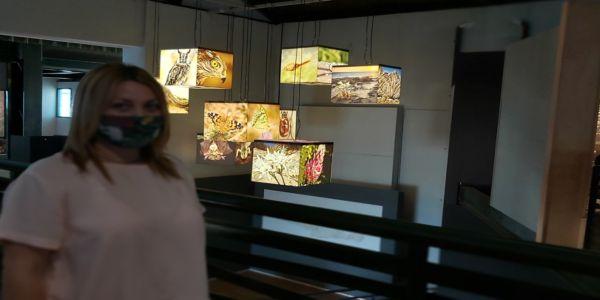 Το Μουσείο Φυσικής Ιστορίας Κρήτης ανοίγει τις πόρτες του για το κοινό - Ειδήσεις Pancreta