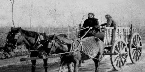 24 Ιανουαρίου 1837, ψηφίζεται στην Ελλάδα ο πρώτος Κώδικας Οδικής Κυκλοφορίας