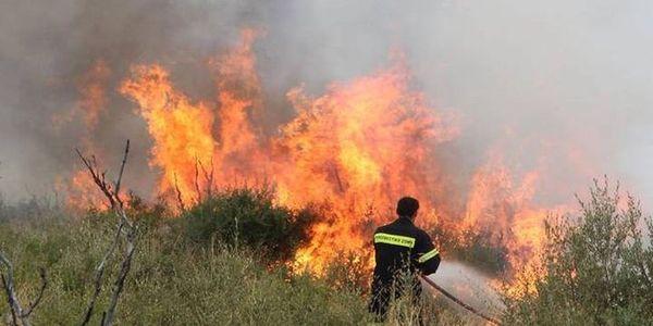 Υψηλός κίνδυνος πυρκαγιάς στην Κρήτη, προειδοποιεί η Πολιτική Προστασία