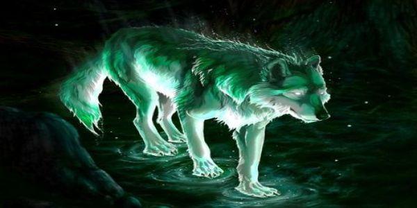 Ο δυσφημισμένος λύκος - Ειδήσεις Pancreta