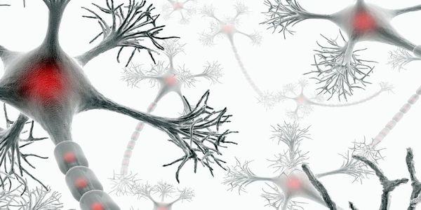 Θεραπεία «φρενάρει» την πολλαπλή σκλήρυνση - Ειδήσεις Pancreta